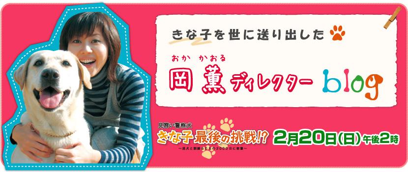 見習い警察犬きな子最後の挑戦!? | ディレクター岡薫ブログ